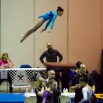 <h4>April 9, 2017 – Level 9 Region 5 Championships, Indianapolis, IN</h4>